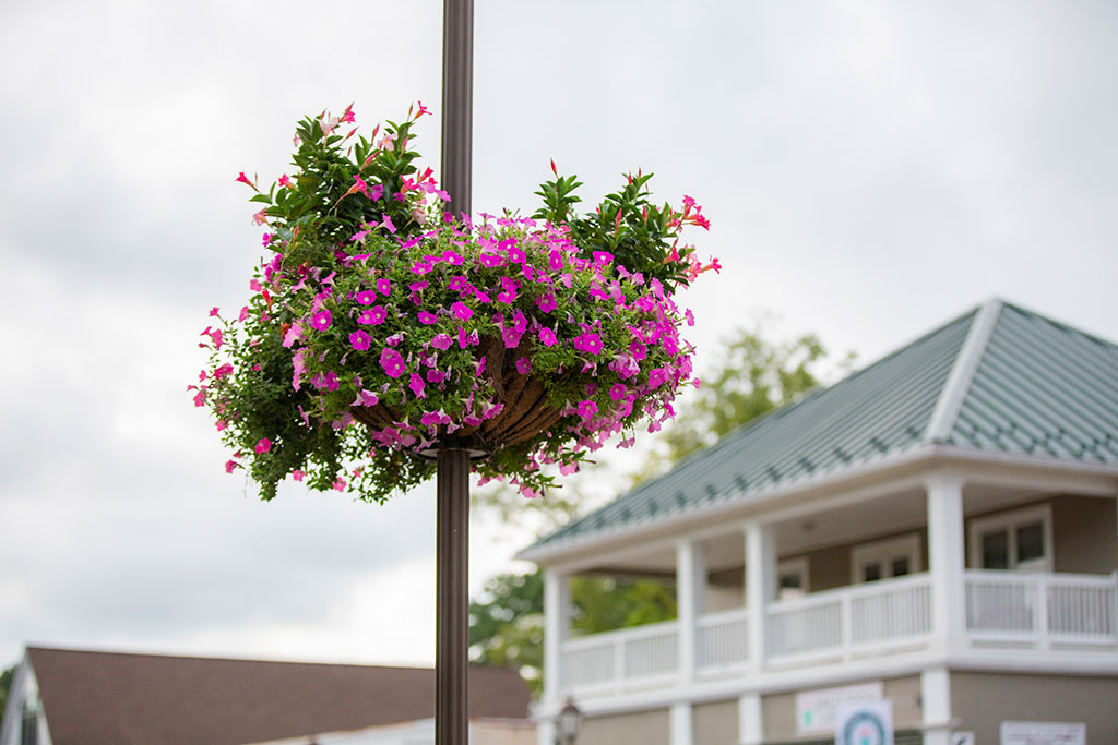 Lamp post basket on Gloucester Main Street